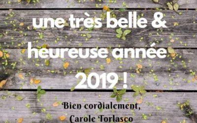 Janvier-2019-declic-conseil